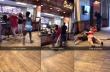 Άγριος τσακωμός μεταξύ γυναικών σε εστιατόριο