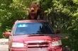 Πεινασμένη αρκούδα επιχειρεί να μπει σε αυτοκίνητο