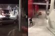 Ύποπτος ξεφεύγει από την αστυνομία με τον πιο απίθανο τρόπο