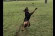 Fail: Σκύλος προσπαθεί να πιάσει ένα μπαλάκι