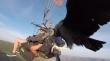 Γύπας προσγειώνεται σε selfie stick